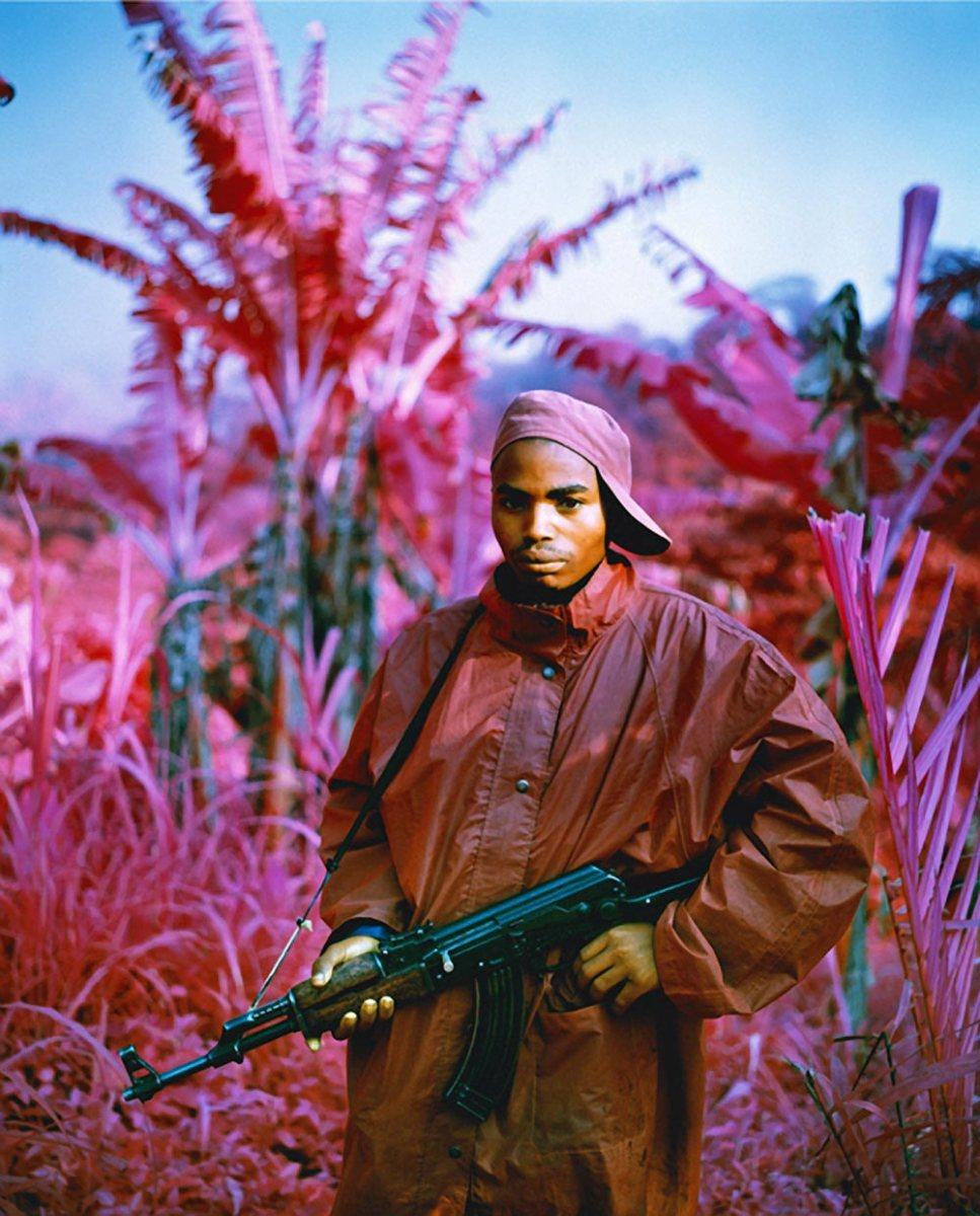 Retour sur Richard Mosse, l'homme qui capture la guerre en rose